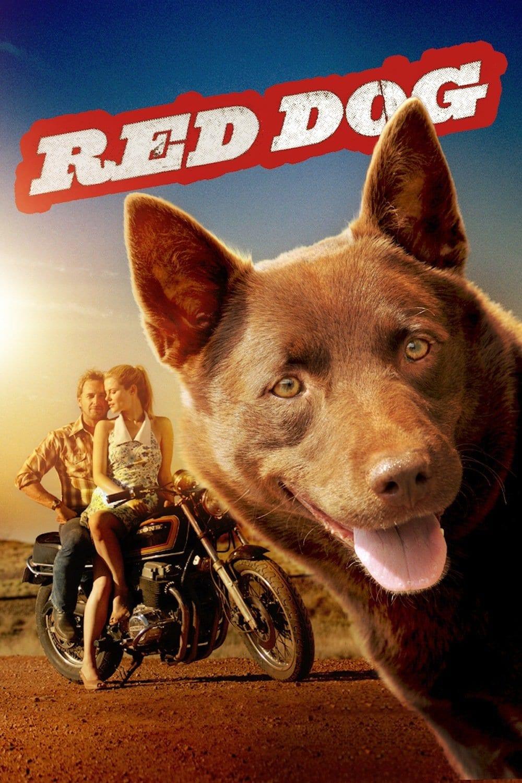 Regarder Red Dog en streaming gratuit