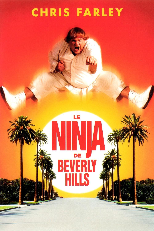 Regarder Le Ninja de Beverly Hills en streaming gratuit