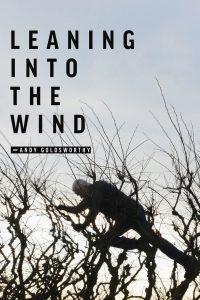 Penché dans le vent