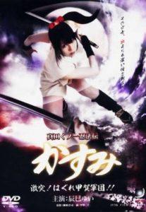Lady Ninja Kasumi 8