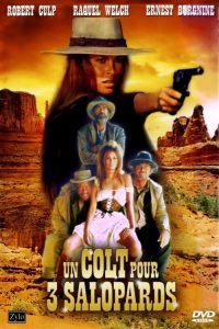 Un Colt pour trois salopards