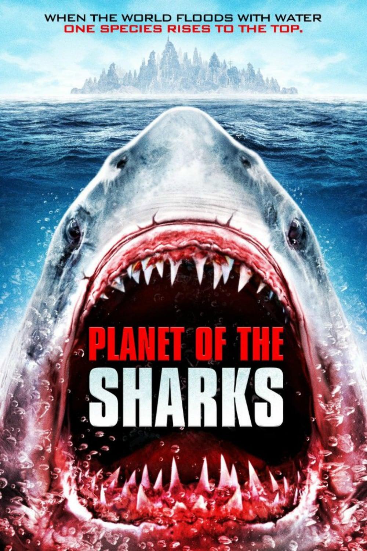 Planete des requins