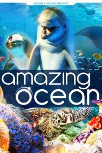Incroyable Ocean 3D