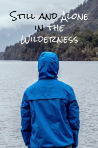 Still and Alone in the Wilderness