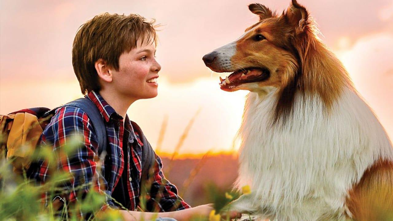 Regarder Lassie – Eine Abenteuerliche Reise en streaming gratuit