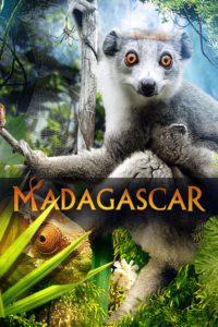 Madagascar 3D