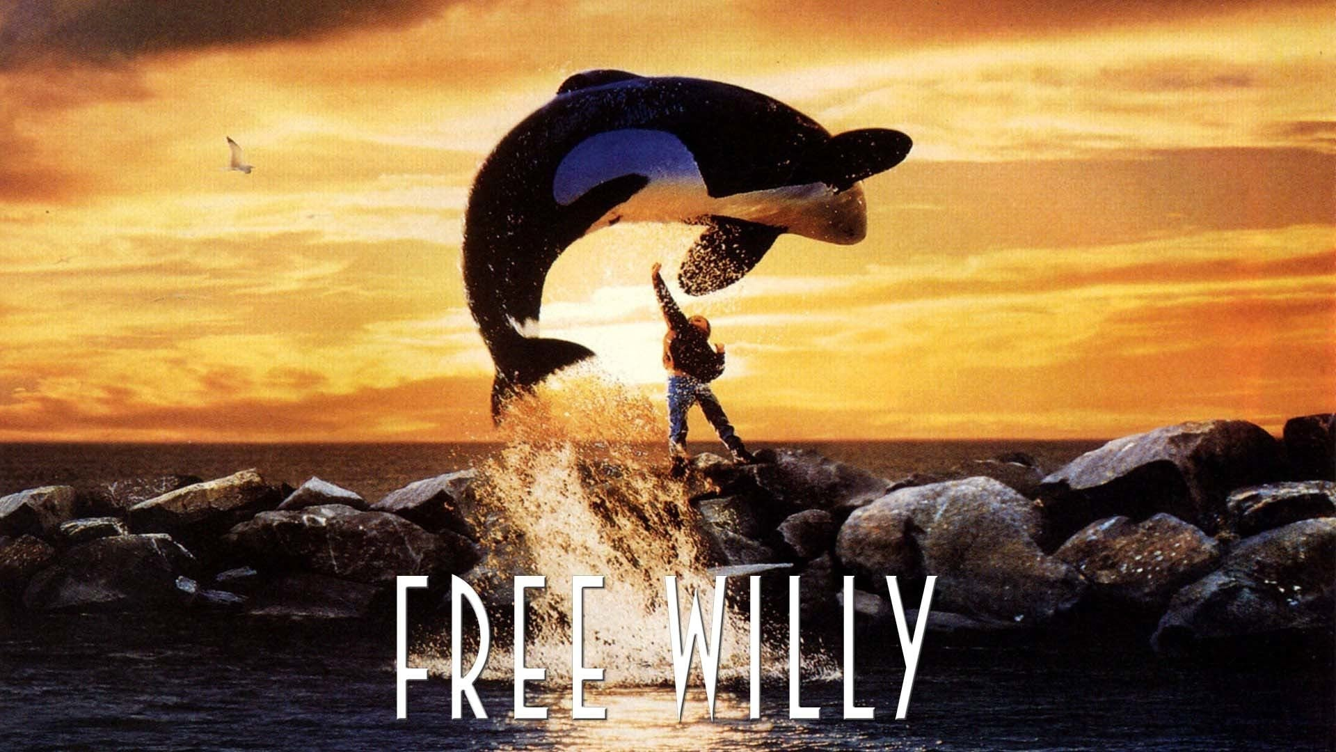 Regarder Sauvez Willy en streaming gratuit